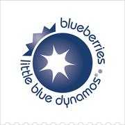 Blueberrycouncil logo