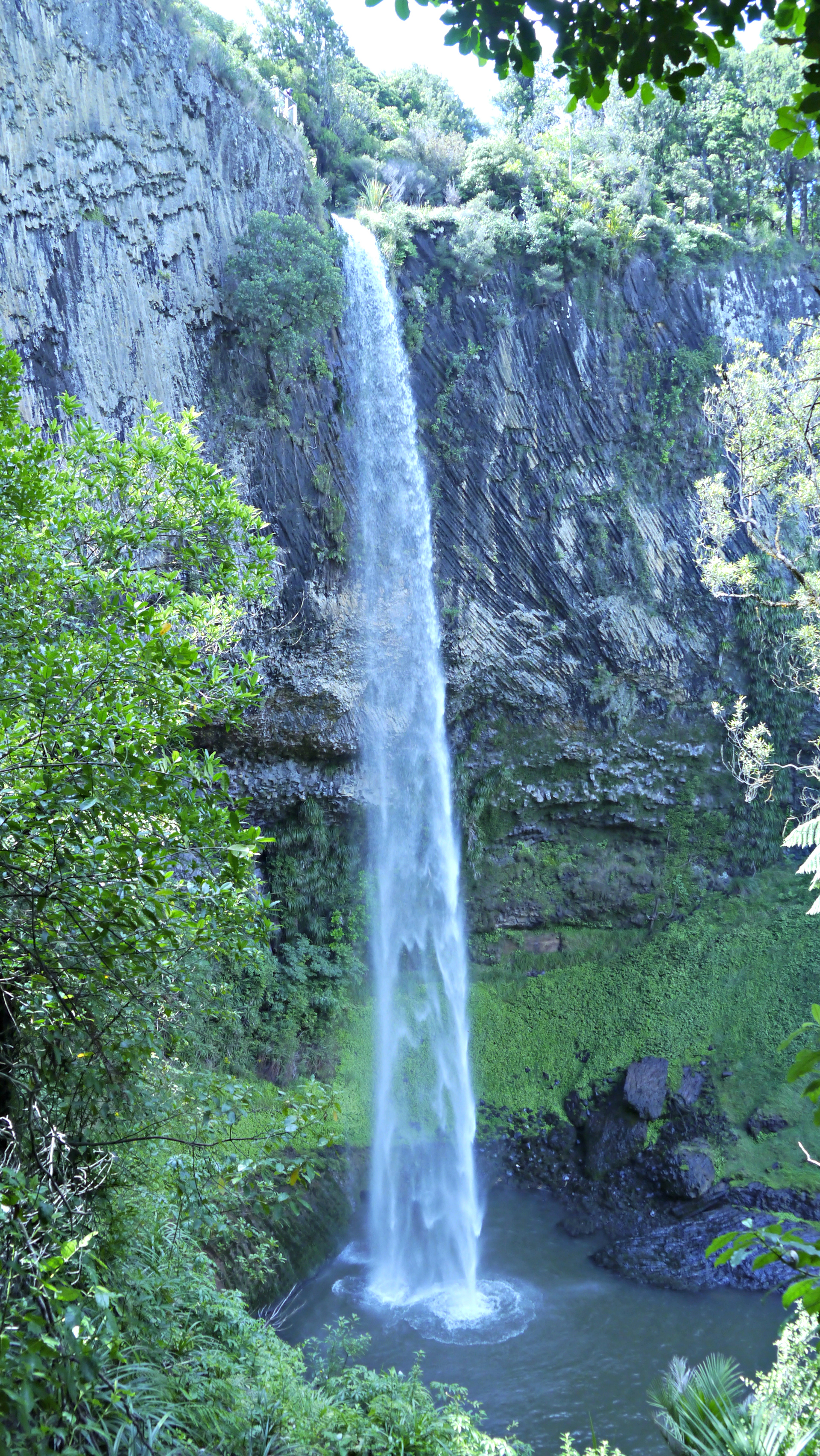 Bridal Veil Falls. Raglan, New Zealand