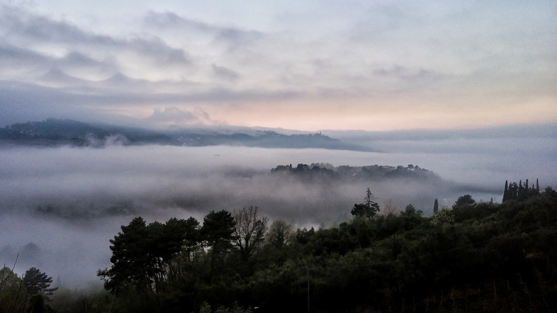 Scenic view of trees on landscape during foggy weather