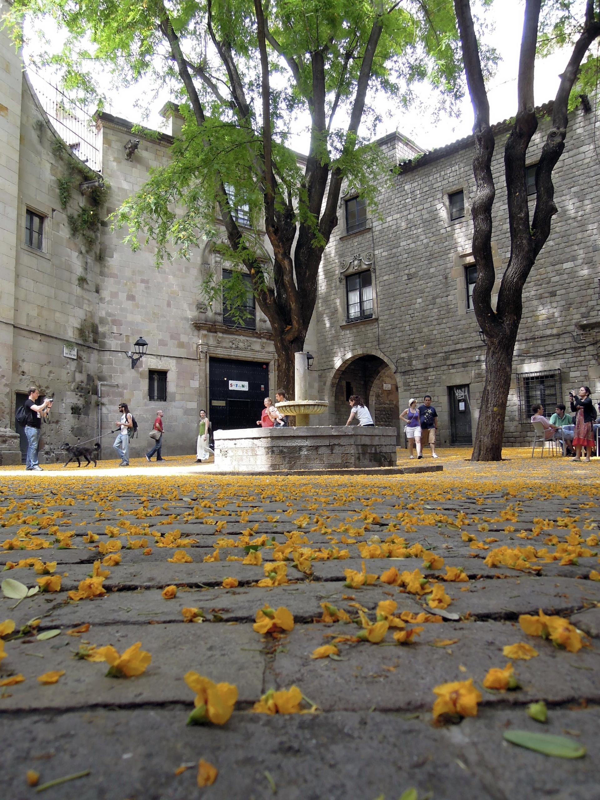 Plaça Sant Felip Neri. Paseo por Barcelona