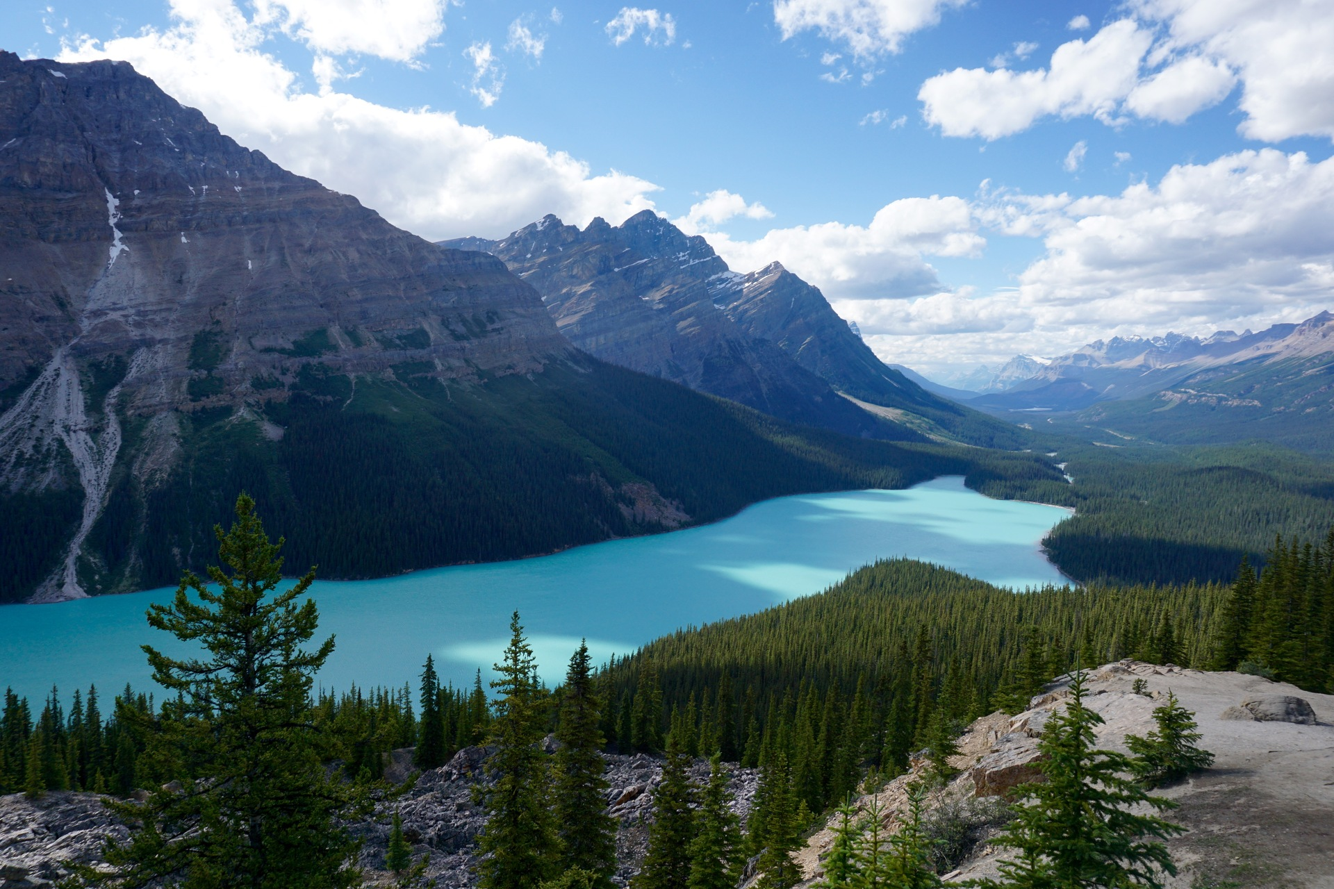 Peyto Lake is so beautiful and it is also extra special as it is in the shape of a wolf ...