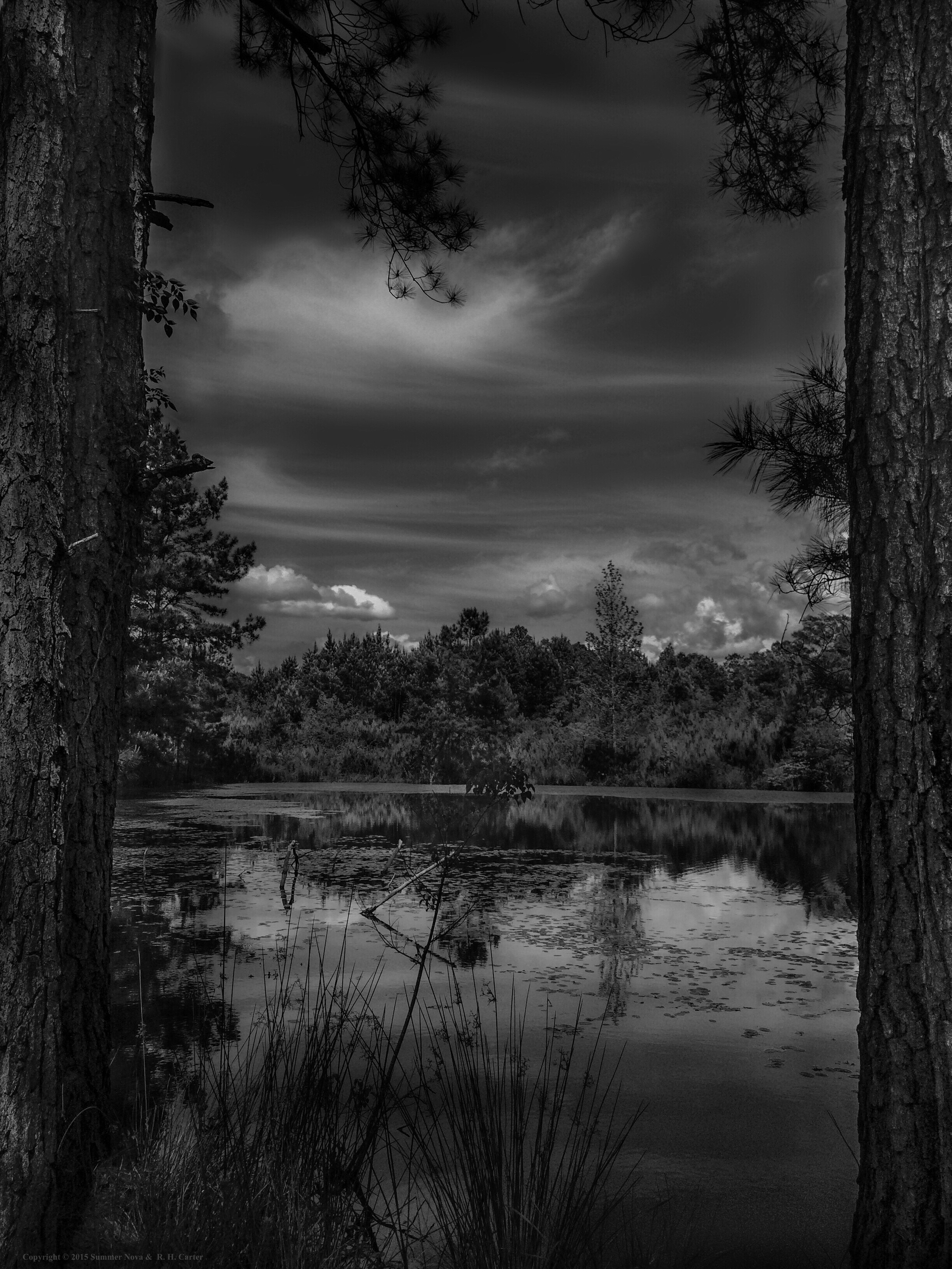 Afternoon Reflections. Afternoon Reflections | black and white, nature, outdoors, scenic