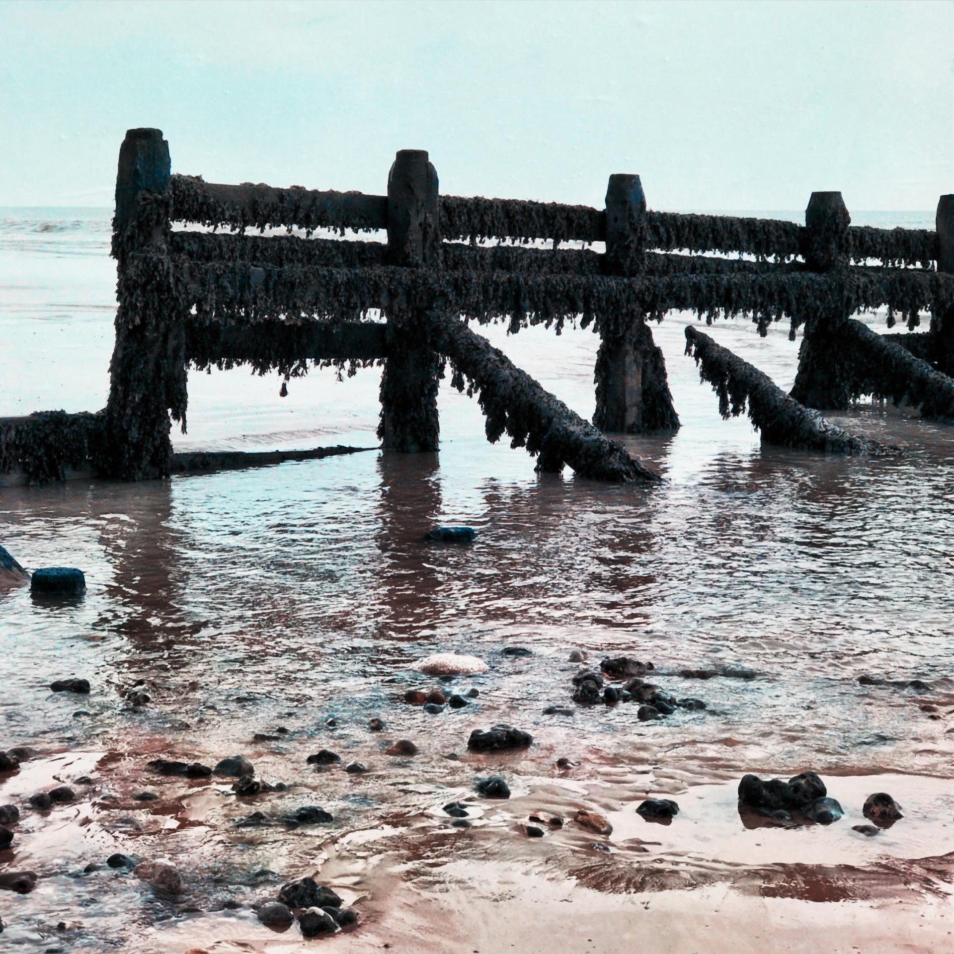 Sea defences Norfolk Coast United Kingdom