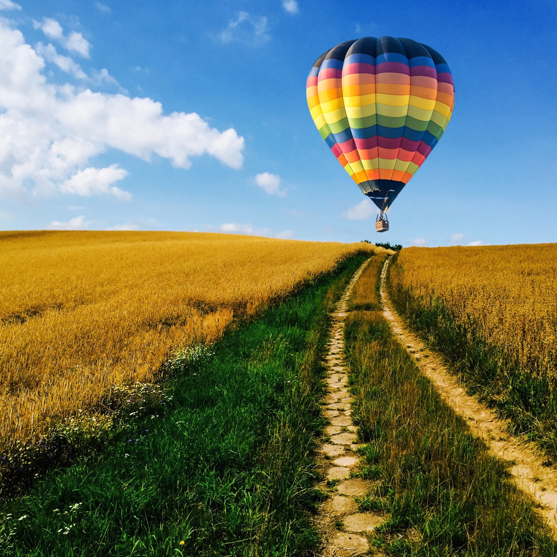 Hot air balloon over autumn field