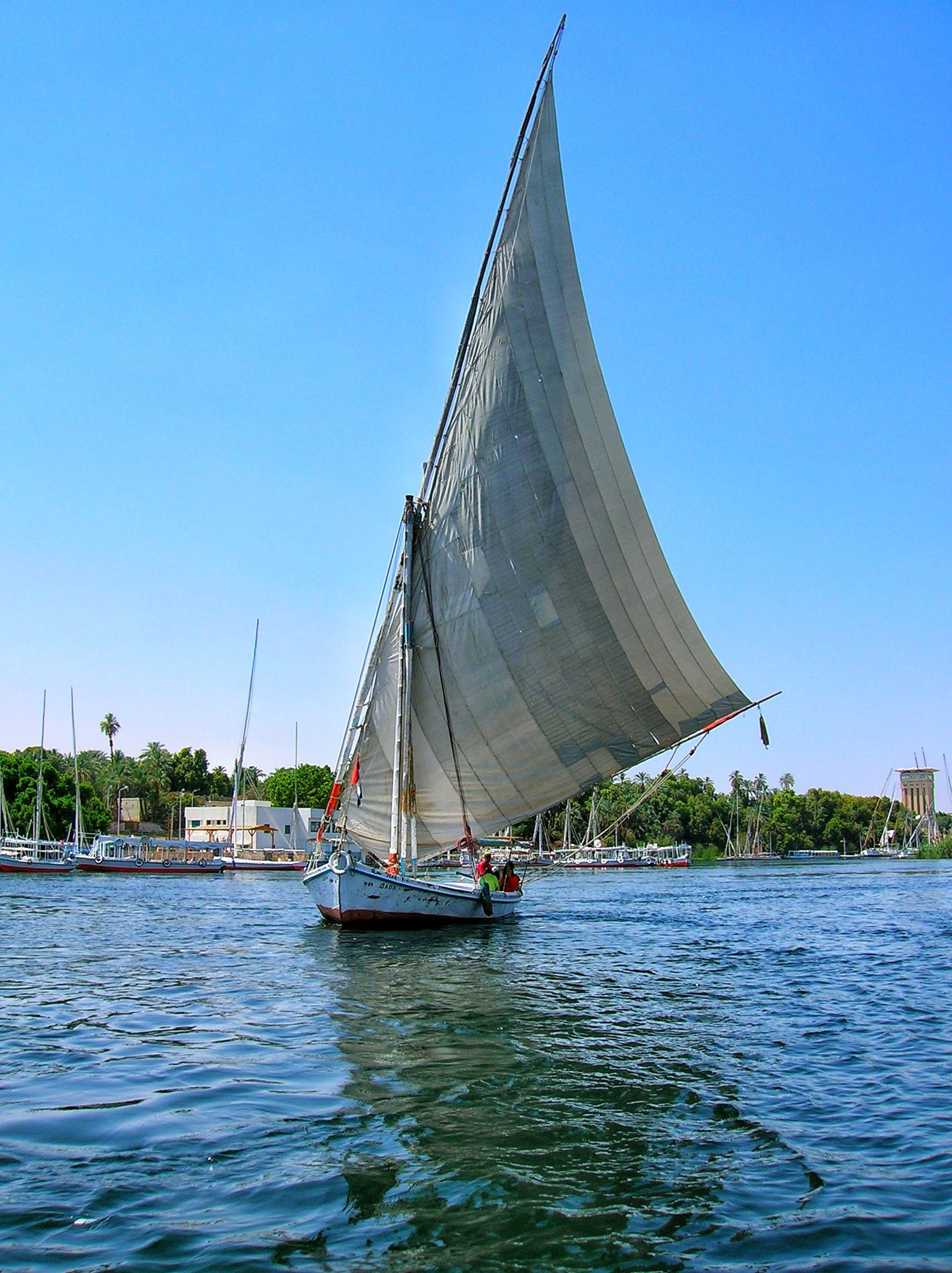 Felucca sailing on the Nile River, Luxor, Egypt.