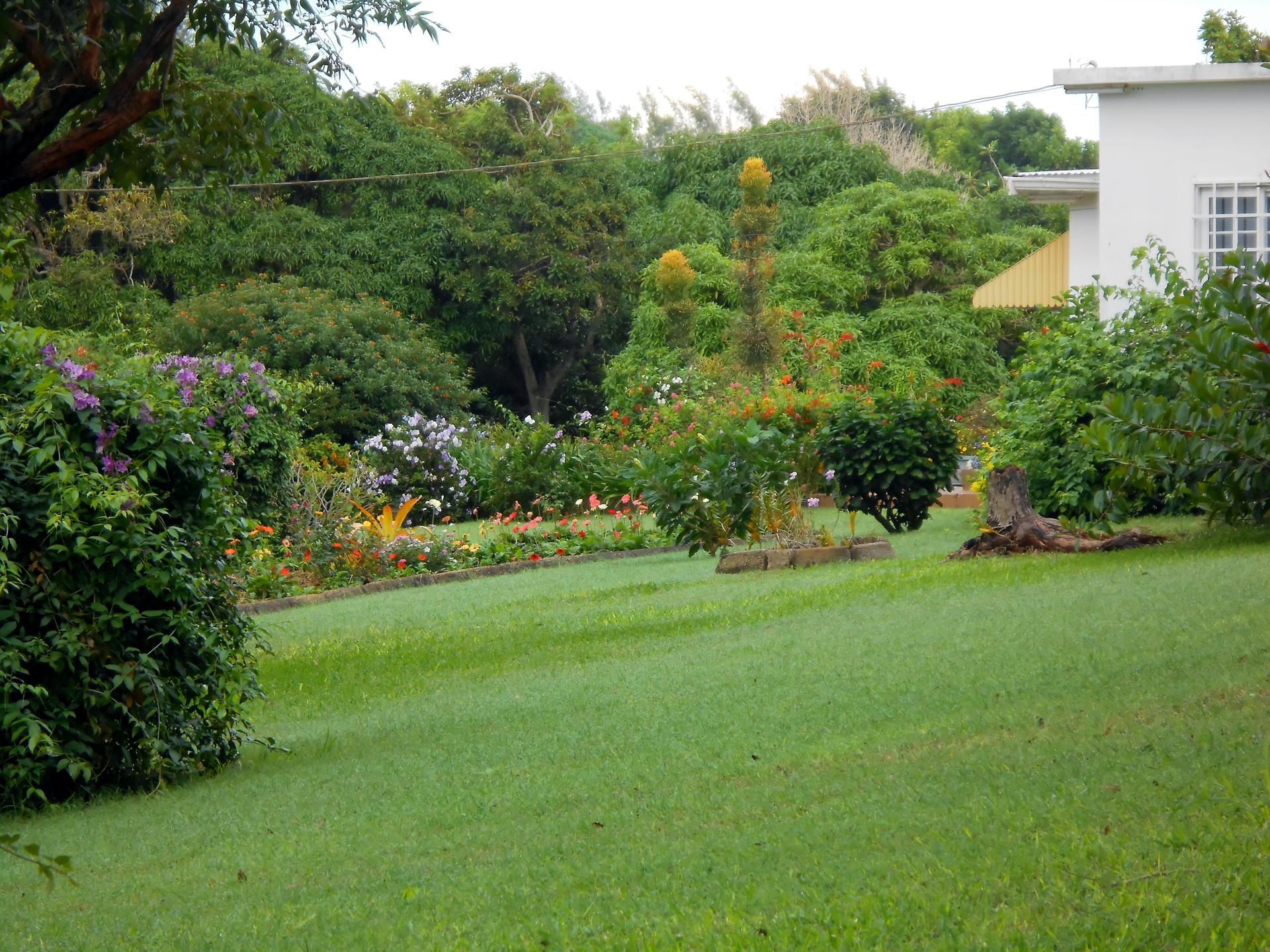 Beautiful Landscape | jacquelin, landscape, flower, lawn